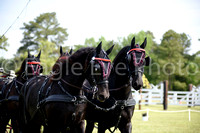 2018 Carriage Classic (May 5-6)